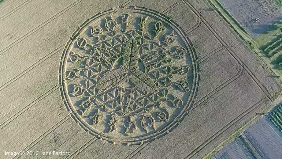 Swallowcliffe crop circle